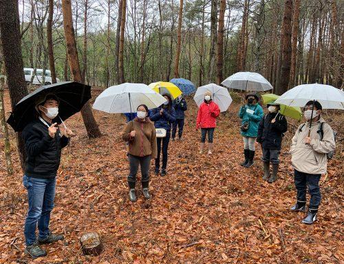 森林療法の研修