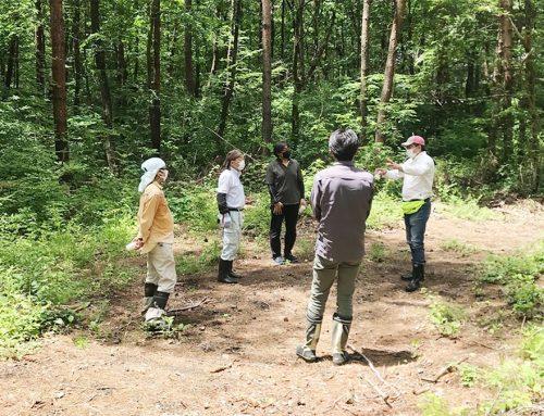 西部小学校北側国有林にて現地検討会